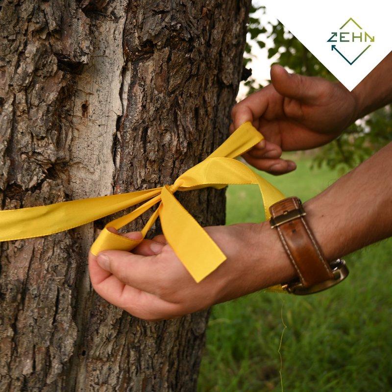 Gelbes Band um einen Baum gebunden